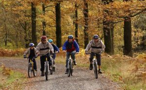 Family mountain biking on a forest road